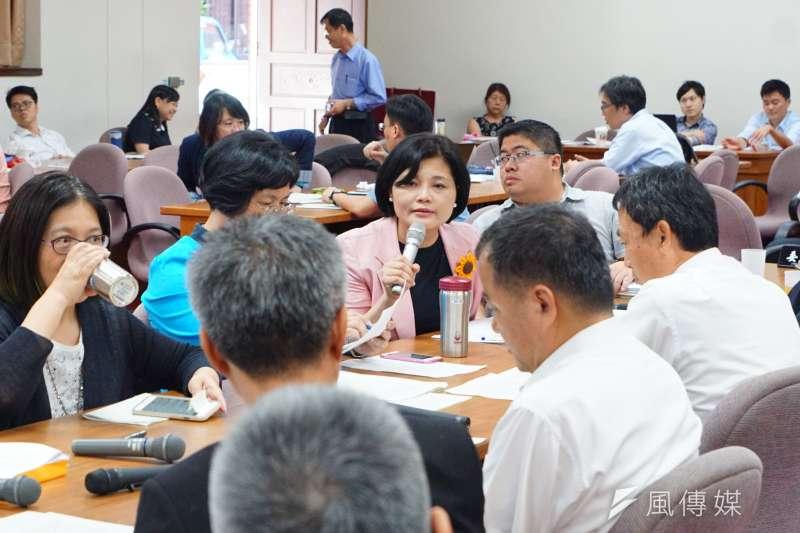 經濟委員會協商 立委張麗善發言 盧逸峰攝