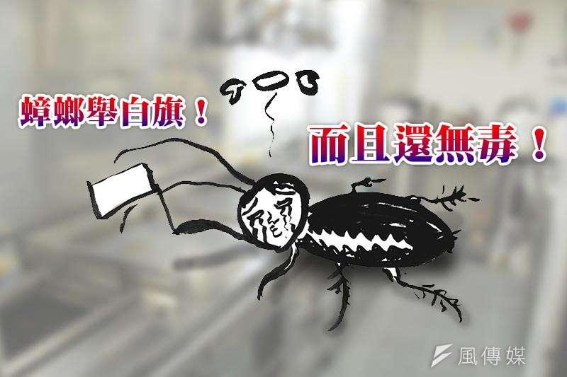只要運用家中小物,免殺蟲劑也能殲滅蟑螂大軍。(插圖/許世哲繪)