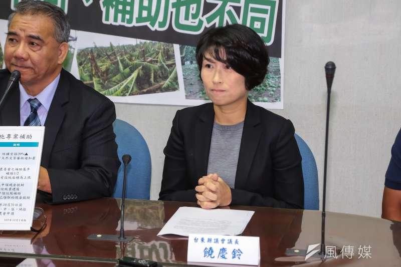 20161004-台東縣議長饒慶鈴4日於立院出席「一個台灣、兩種標準,尼伯特、梅姬風力補助也不同」記者會。(顏麟宇攝)