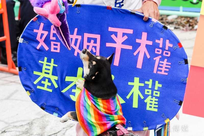台灣伴侶權益推動聯盟到立院外舉辦「婚姻平權,全民守護」活動。(陳明仁攝)