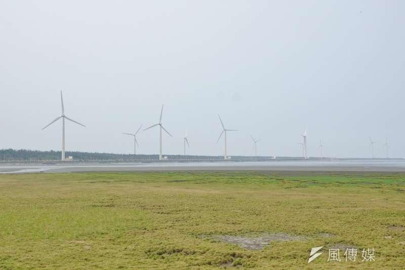高美溼地的風力發電機。(盧逸峰攝)