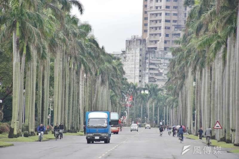 20170314-台灣大學校門內一景。(盧逸峰攝)