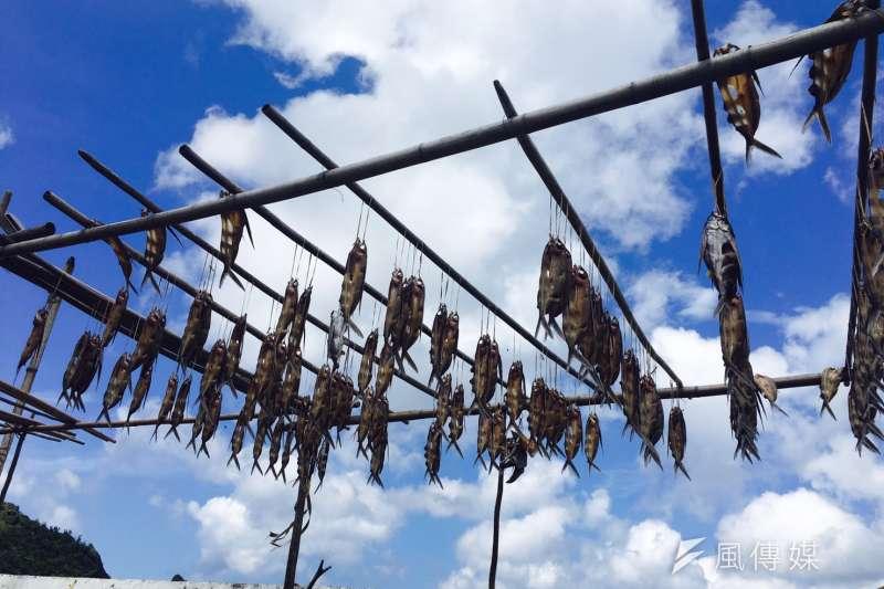 蘭嶼飛魚季登場了,同時也進入蘭嶼觀光季節,當地居民提醒遊客,勿隨意觸摸拼板舟拍照、不要闖入曬飛魚庭院,造成漁夫運氣不佳。(風傳媒)