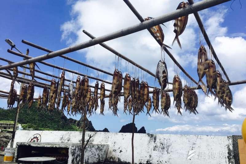 蘭嶼,飛魚(風傳媒)