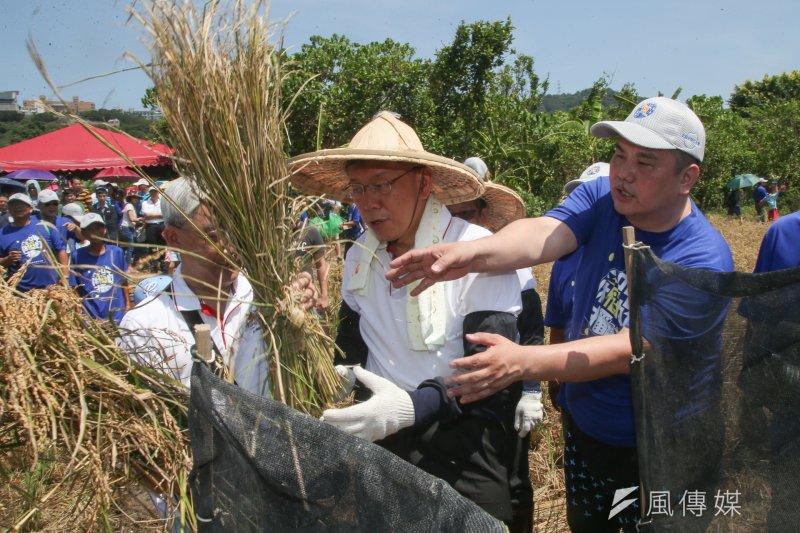 兩黨不爭氣,台北市長柯文哲當然繼續收割。圖為柯文哲出席「2017年北投割稻體驗活動」。(陳明仁攝)