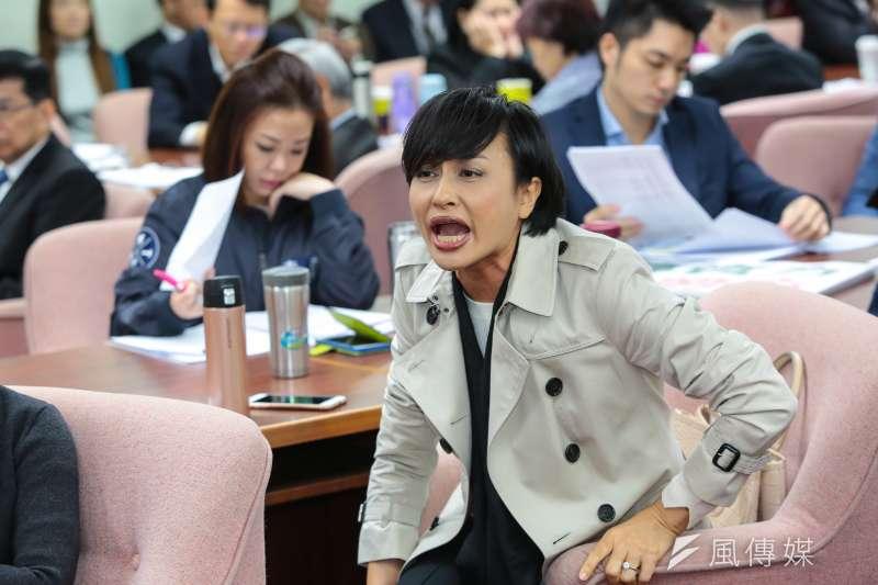 立法院審查勞基法修正案,民進黨立委邱議瑩先是與台徐永明對罵「太陽花崩潰了」,後指場外抗議者都是放錄音帶的,遭到網友批評。(顏麟宇攝)