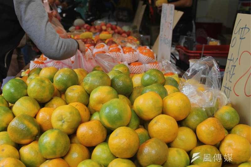 立冬過後便是橘子的盛產期。(圖/魏韻恩攝)