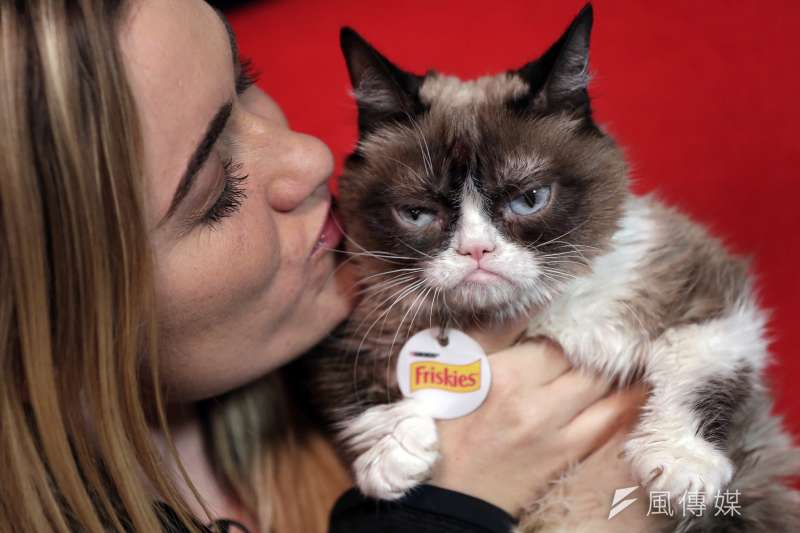 不爽貓(Grumpy cat)和主人(Tatabatha bundesen )(AP)