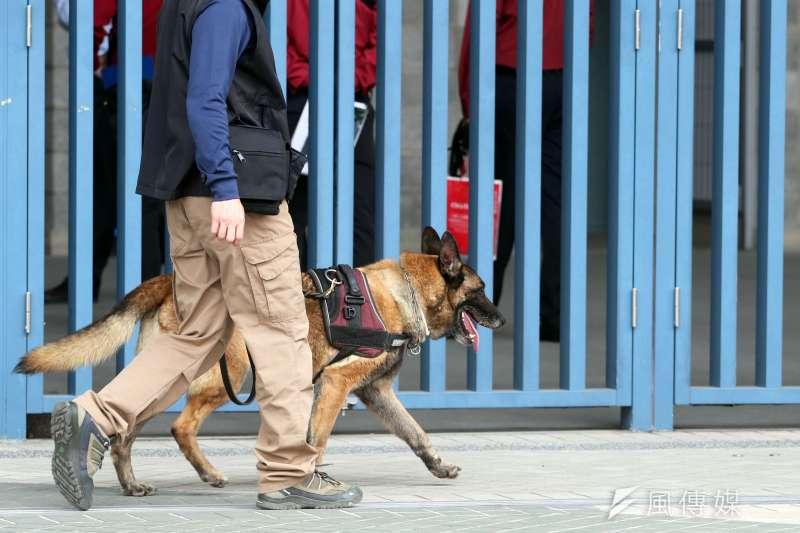 憲兵指揮部警衛大隊軍犬分隊於2017年世大運期間,負責相關場所的搜索和偵爆任務。(蘇仲泓攝)