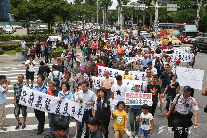 南部鳳梨農4日北上到行政院抗議價格崩盤,並怒丟鳳梨。民進黨立院黨團上午舉行記者會回應。(陳明仁攝)