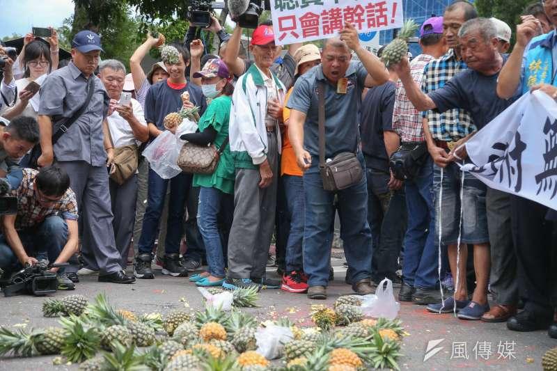 南部鳳梨農北上到行政院抗議價格崩盤,並怒丟鳳梨。(陳明仁攝)