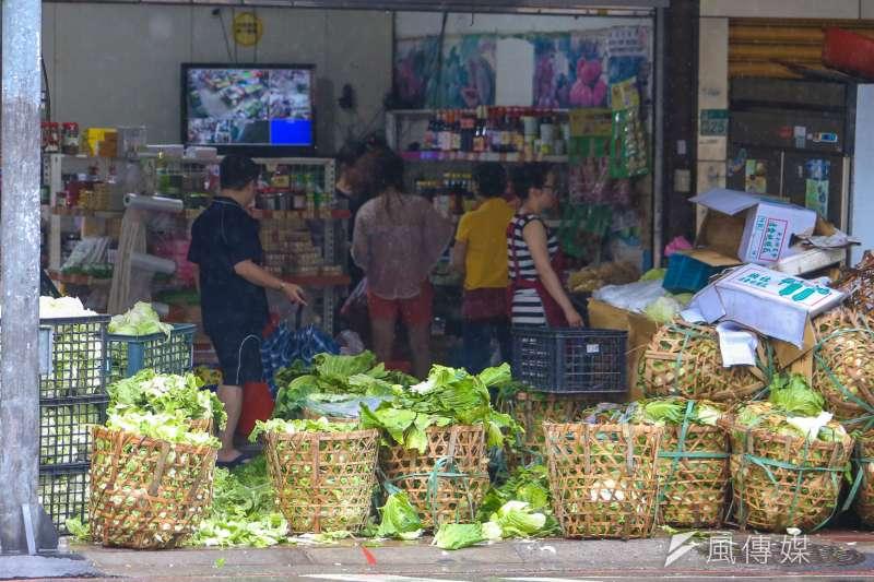 作者認為,今年由於天候佳,高麗菜(甘藍菜)生長期間未遇災害產量多,加上農民增加種值面積,使得整體供應量明顯提高,農民再度面臨價格低迷的慘狀。(資料照,陳明仁攝)