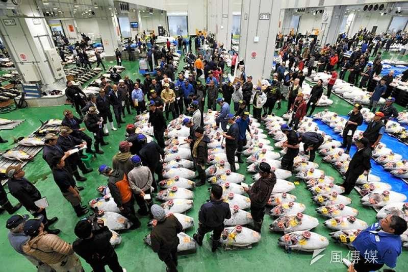 豐洲市場正式開幕 首場鮪魚競拍吆喝聲氣勢十足(圖/潮日本)