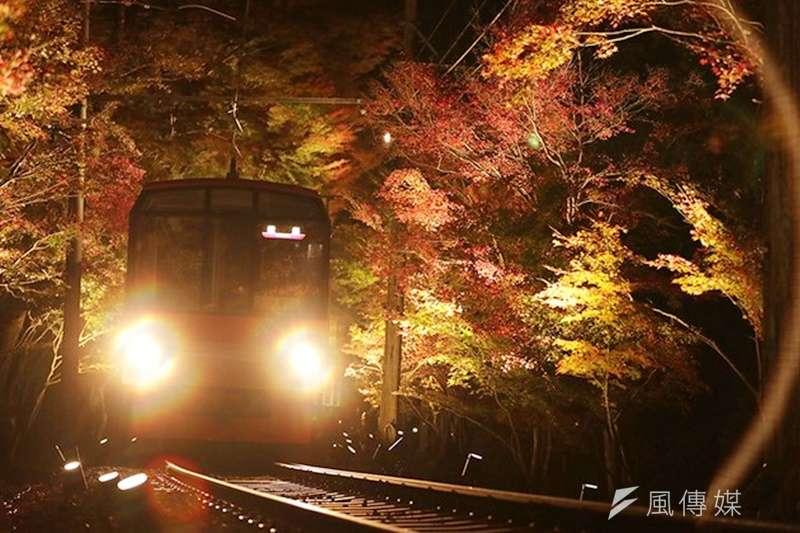 據說過去還是矮木時被稱為「紅葉行道樹」,長成高大樹木後則改稱為「紅葉隧道」。(圖/潮日本提供)