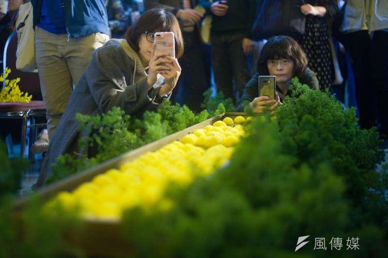 20181216-李維菁追思會暨新書發表會,民眾在紀念的花池旁拍照留念。(甘岱民攝)