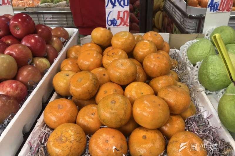 20190130-羿雯春節留稿配圖-柑橘示意圖,茂谷柑。(廖羿雯攝)