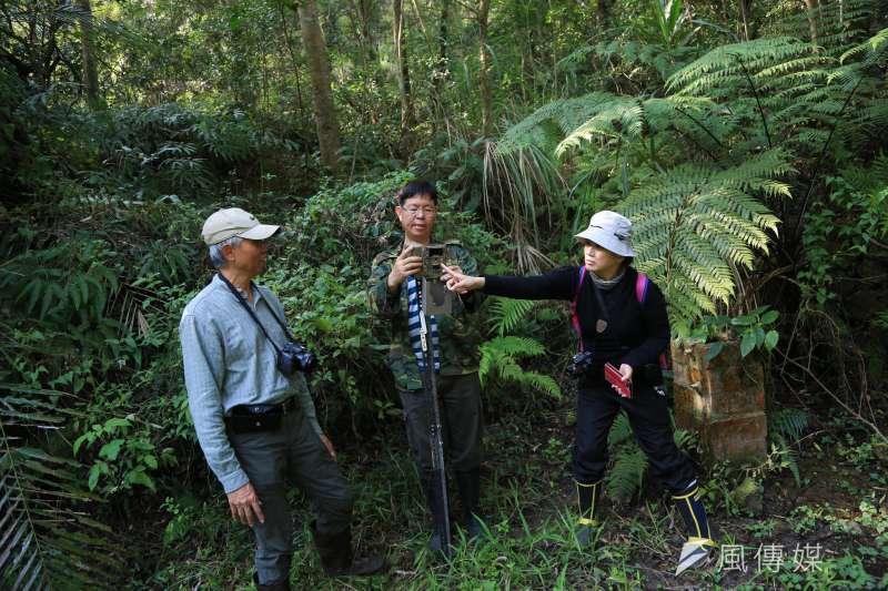 20190125-25日石虎專題配圖,圖為吳金樹老師(中)以及保護生態的夥伴在裝設自動攝影機。(簡必丞攝)