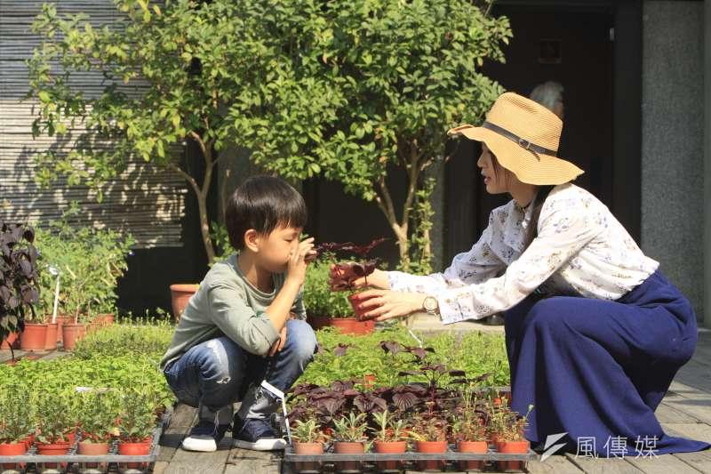 薰之園內有多達2~30種香草,適合親子共同、敞洋在在迷人香草世界。(圖/李義章攝)