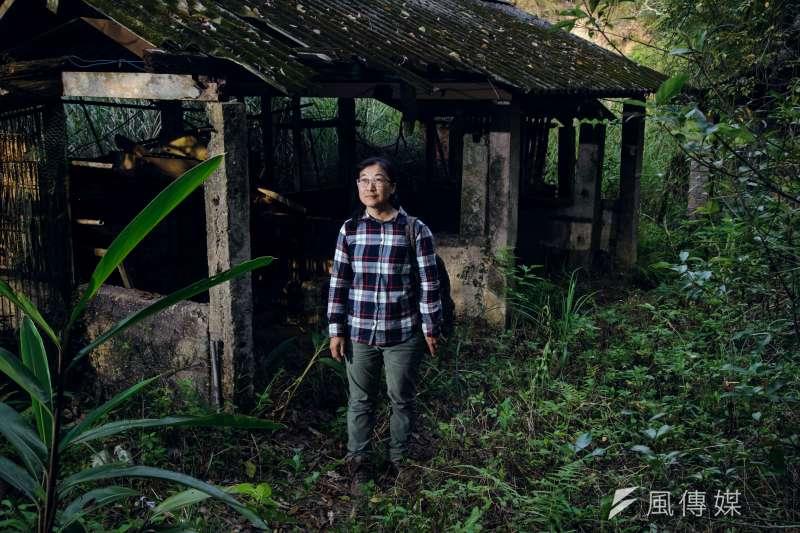 陳美汀曾在苗栗銅鑼山區搭了臨時工寮,為石虎阿嵐進行野放訓練,但如今阿嵐已經數月毫無音訊。(甘岱民攝)