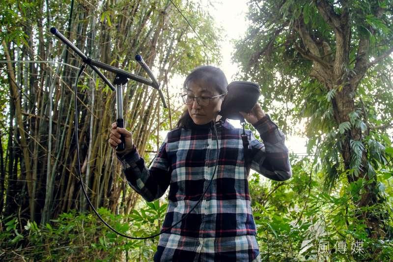 20190219-苗栗石虎專題,台灣石虎保育協會理事長陳美汀手持無線電尋找穿戴發報器的石虎。(甘岱民攝)