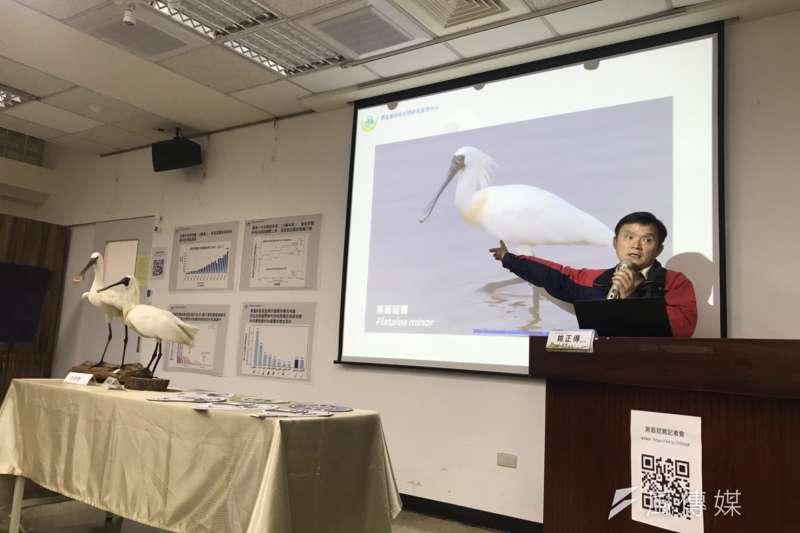 20190307-農委會特有生物研究保育中心與台灣師範大學生命科學院合作,日前終於完成全球首度對黑面琵鷺基因組的完整定序,獲得黑面琵鷺共約11.9億個鹼基對的基因組草圖。圖為農委會特有生物研究保育中心副研究員姚正得。(廖羿雯攝)