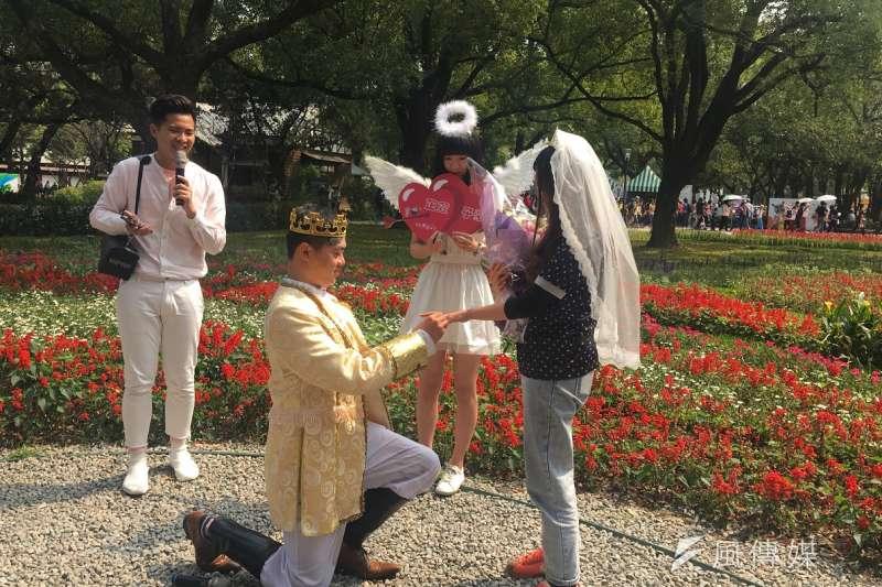跟女朋友愛情長跑12年的郭先生在中市觀旅局的協助安排下,在花博后里馬場安排白馬王子求婚記,在親友跟遊客的見證下為女朋友帶上求婚戒。(圖/王秀禾攝)