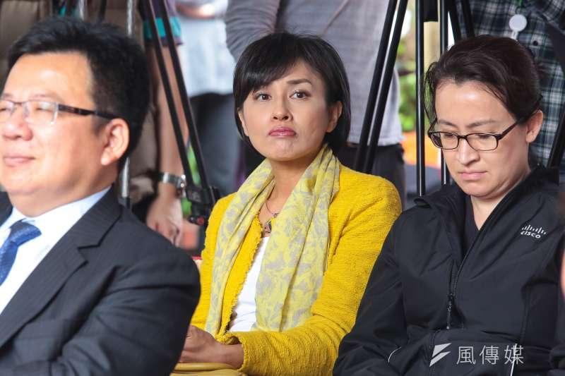 同婚專法17日在立法院進行表決,民進黨立委邱議瑩表態力挺行政院版本,表示在這個歷史的時刻,選擇與黨和行政院站在一起。(資料照,顏麟宇攝)