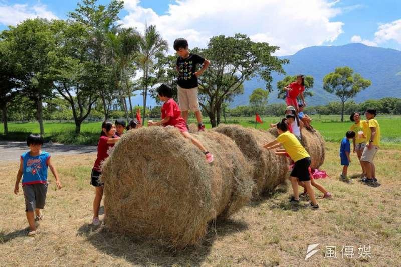 「推牧草球」適合全家大小一起玩。(圖/徐炳文攝)