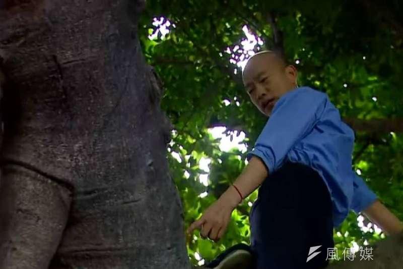 高雄市長韓國瑜前往前鎮區西山里視察登革熱防疫作業,爬樹檢察樹洞有沒有孳生病媒蚊。(圖/徐炳文攝)
