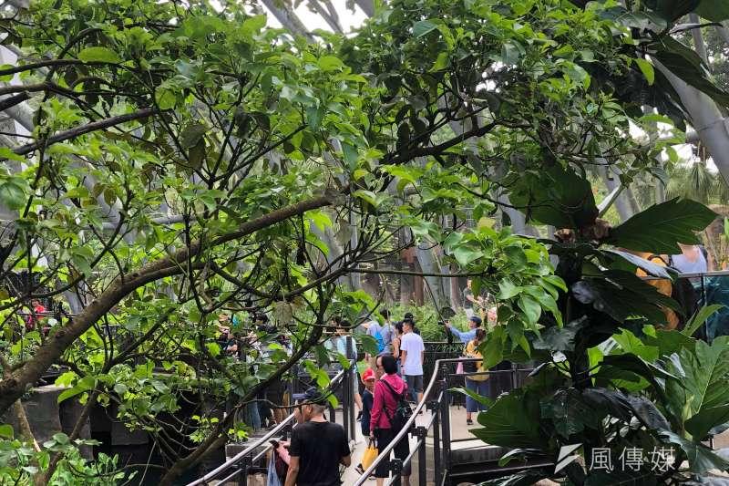 20190730-面對館內部到過窄造成遊客行動不便的質疑,曹先紹表示,據他的觀察,許多遊客在參觀時都會彼此提醒讓路,遊客其實是很有氣質很有水準,「有時候遊客管遊客也是一種管理」。(張雅如攝)