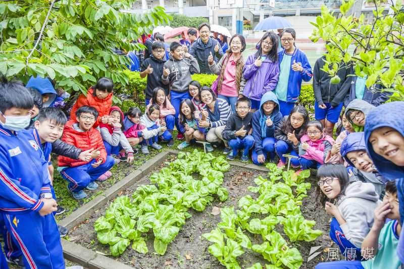 黑松教育基金會透過「黑松綠+校園計畫」帶孩子在大自然中學習。(圖/黑松教育基金會提供)