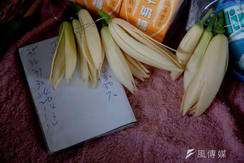 傳出不少民眾搶著批發玉蘭花,導致玉蘭花價格上漲。但有台北中盤商出面闢謠表示,這時玉蘭花是旺季,不但沒人搶買,生意還掉了3到4成。示意圖。(資料照,簡必丞攝)