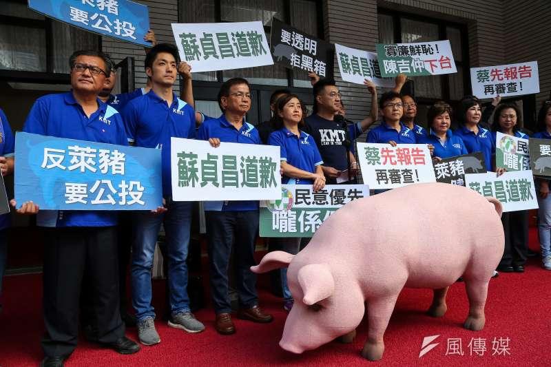 蔡政府8月28日大動作宣布開放含萊克多巴胺的美國豬肉進口,國民黨主席江啟臣及黨籍立委動員抗議。(資料照,顏麟宇攝)
