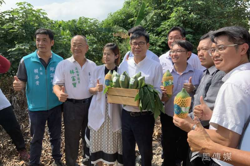 高雄市長陳其邁今(12)日前往美濃訪視木瓜產業。(圖/徐炳文攝)
