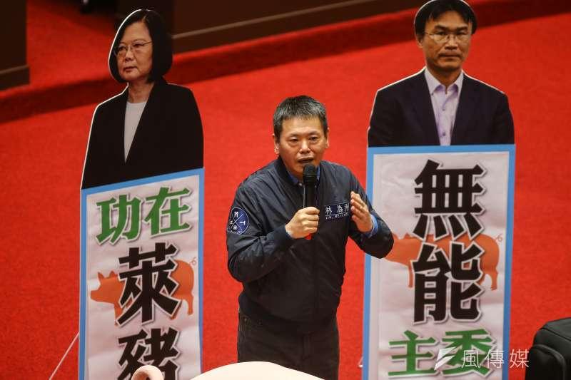 20201020-國民黨總召林為洲20日於立院議場發言,現場擺放「蔡英文功在萊豬、陳吉仲無能主委」的人形立牌。(顏麟宇攝)
