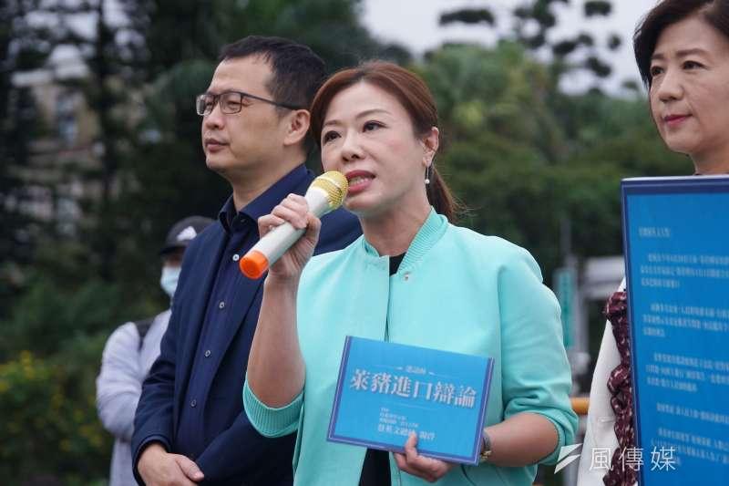 國民黨副秘書長李彥秀29日於臉書發文表示,為了陪伴孩子,在公投提案完成第一階段後向江啟臣提出假單,沒想到會被政治操作。(資料照,盧逸峰攝)