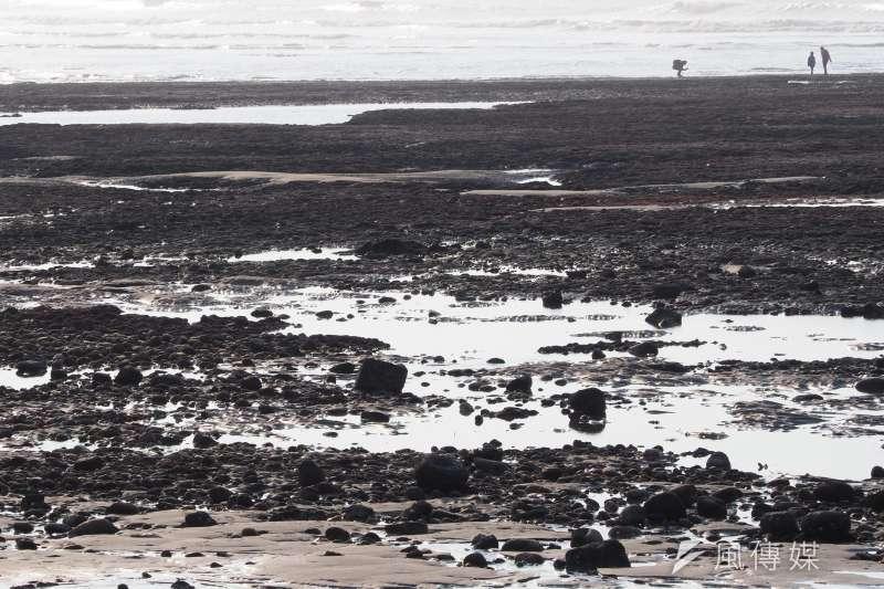 桃園大潭藻礁的公投案,是怎麼產生的呢?(圖/柯承惠攝)