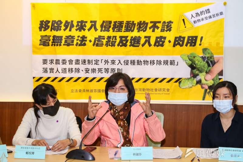 民進黨立委林淑芬(中)今日召開「移除外來入侵種動物不該毫無章法」記者會。(顏麟宇攝)