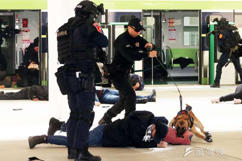 台中市警察局於中捷「台中市政府站」舉行反恐維安演練。圖為警犬撲咬暴徒。(資料照,蘇仲泓攝)
