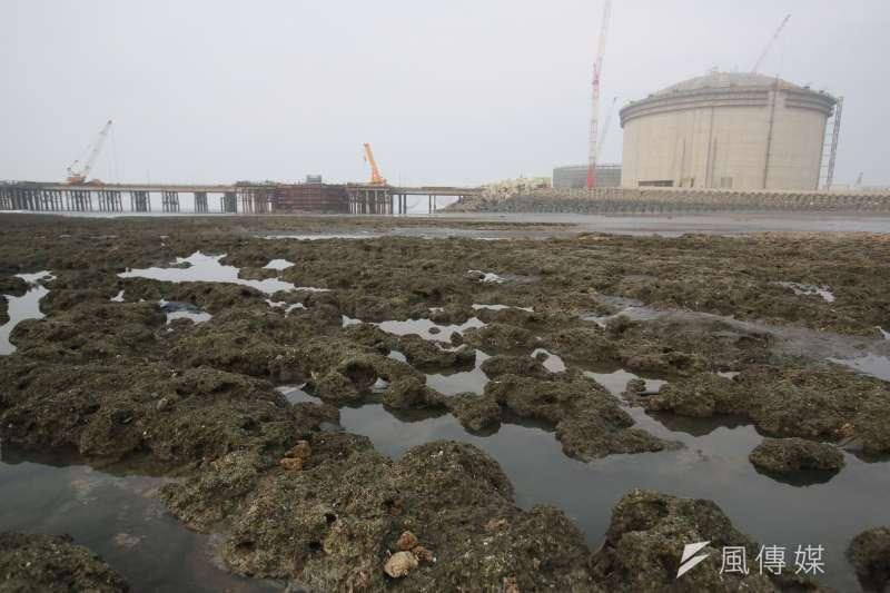 針對藻礁議題,行政院長蘇貞昌3日主持行政立法協調會報,會中經濟部提出三接外推方案,將工業港再外推455公尺,已離岸1.2公里,預計2025年6月供氣。(資料照,柯承惠攝)