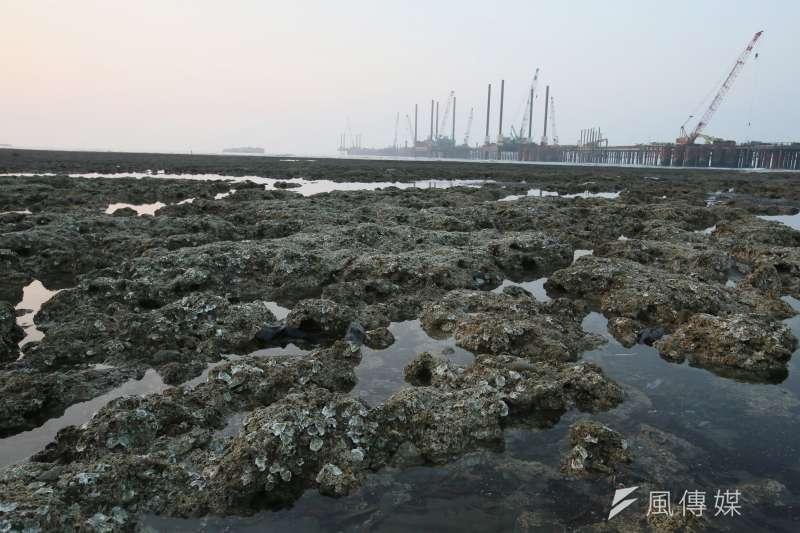 作者指出,藻礁議題持續發燒,部分人士稱若無興建「三接」,台灣將可能上演缺電危機,甚至執意將「藻礁公投」與「重啟核四」畫上等號。(資料照,柯承惠攝)