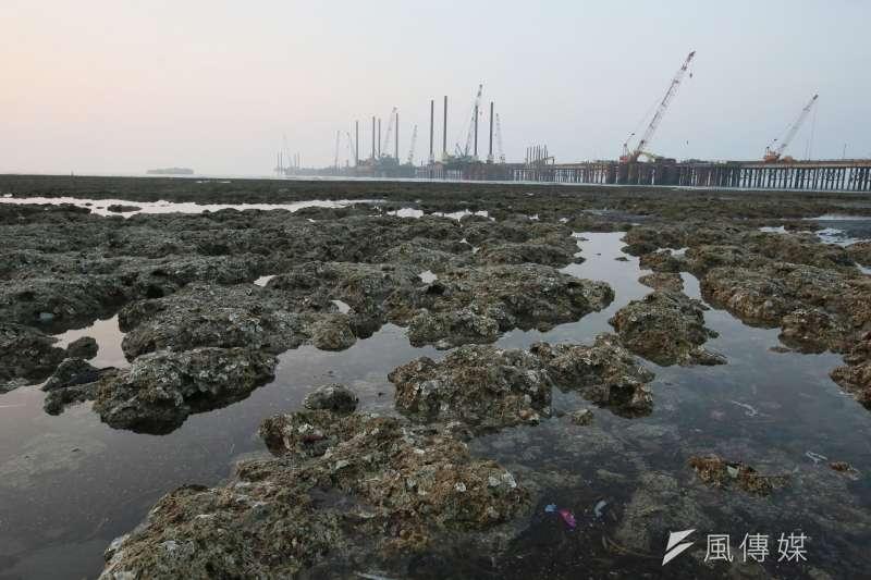 作者認為,天然氣複循環發電較燃煤發電, 僅解決了一半汙染,並非零排放。藻礁若遭破壞,將難以預測會造成多大環境生態的問題。(資料照,柯承惠攝)