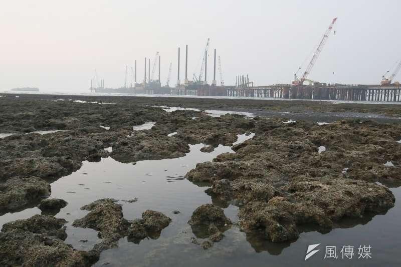 大潭藻礁與中油天然氣第三接收站工程(三接)。(柯承惠攝)