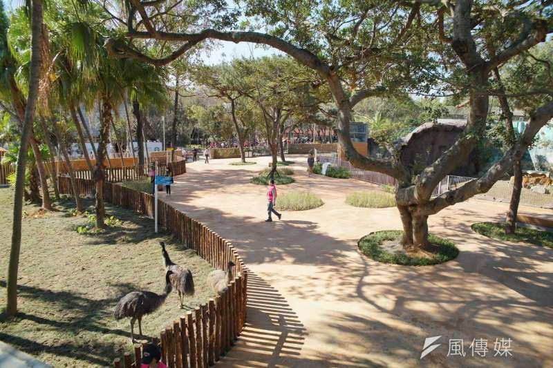 新竹市長林智堅宣布,新竹市立動物園27日起對外開放。圖為園內一景。(盧逸峰攝)