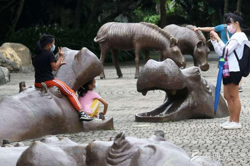 20210801-遊客和動物園內動物造景合影。(蘇仲泓攝)