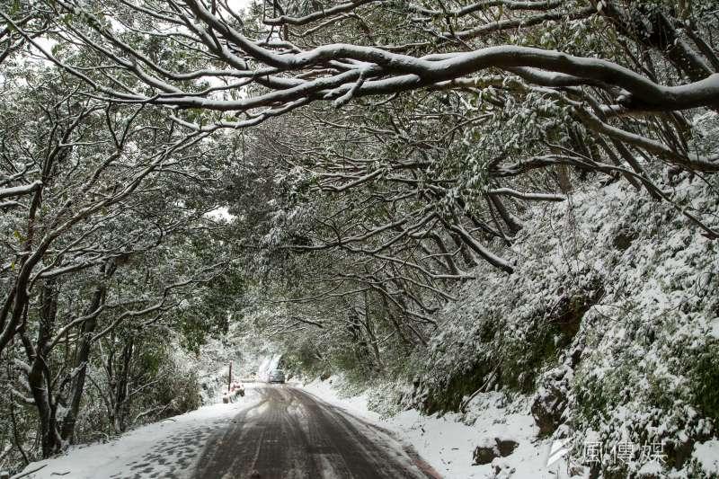 霸王寒流來襲24日凌晨陽明山國家公園罕見的降下大雪。(顏麟宇攝)