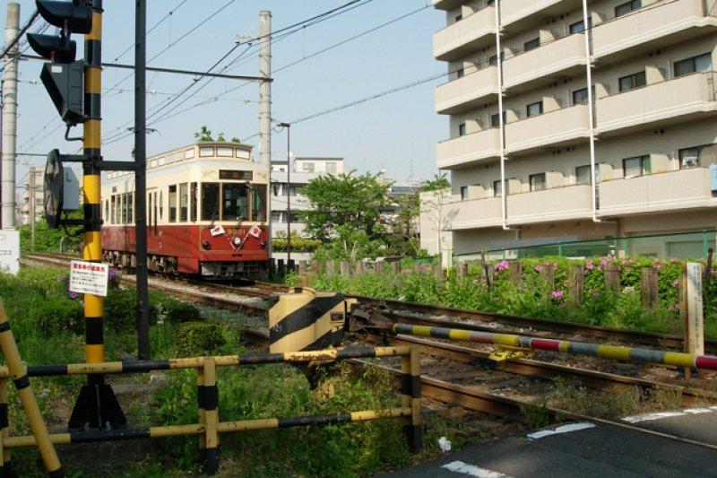 懷舊電車仍在線行駛,幸運乘客有機會搭乘。(圖/Flickr@YL)