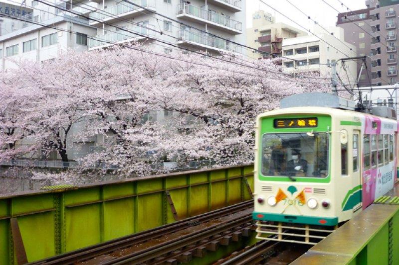 荒川線路面電車,遠離城市塵囂,獨樹一格。(圖/Flickr@Kuracom)