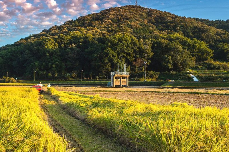 人口老化的農村,如何透過一連串大膽的創新與嘗試尋求出路?(圖/Takuma Kimura@flickr)