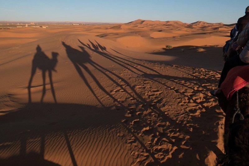 沙漠中騎駱駝